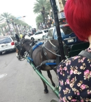 NOLA Carriage Ride